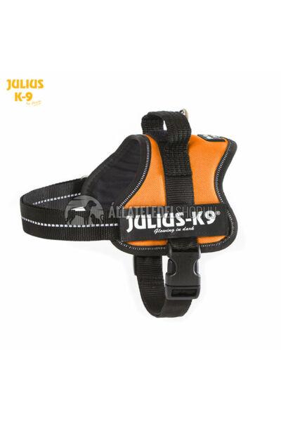 Julius K-9  Powerhám Mini-Mini Narancs