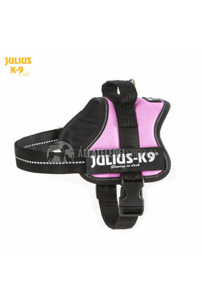 Julius K-9  Powerhám Mini Pink