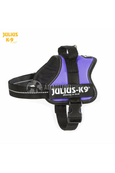Julius K-9  Powerhám Mini-Mini Lila