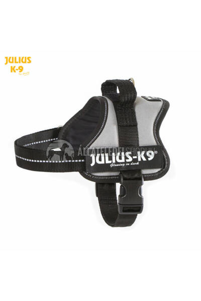 Julius K-9  Powerhám Mini Ezüst