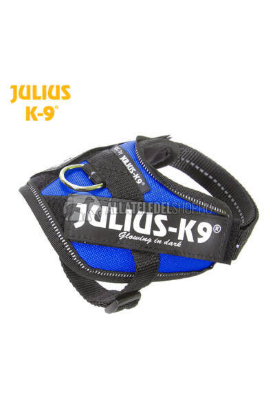 Julius K-9 IDC Powerhám Baby 1 Kék
