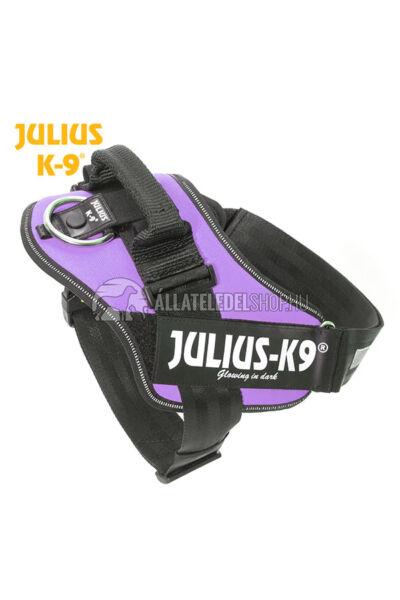 Julius K-9 IDC Powerhám 1 Lila