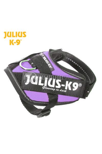 Julius K-9 IDC Powerhám Baby 1 Lila