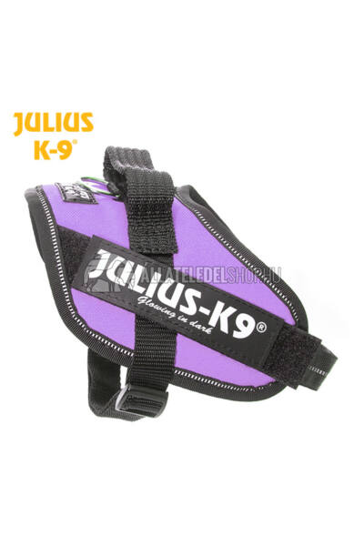 Julius K-9 IDC Powerhám Mini-Mini Lila