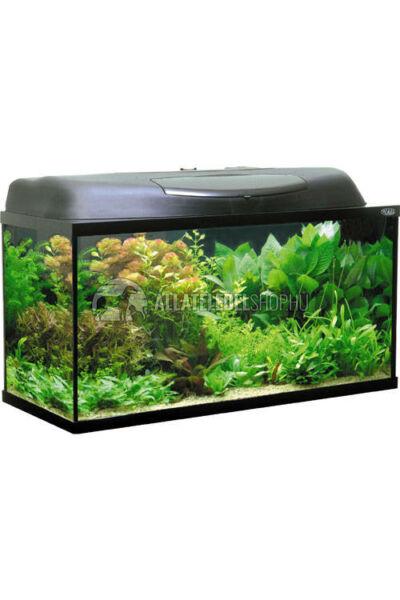 Akvárium szett - Aquael Szett Pearl 80 112L