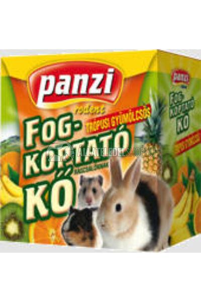 Panzi - Rodent fogkoptató rágcsálóknak tropusigyümölcsös