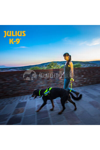 Julius K-9  IDC Lumino nyakörv, 2,5cm/45cm