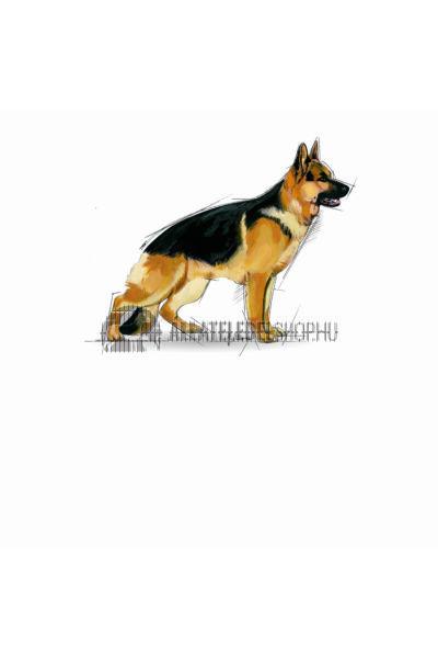 Royal Canin - Maxi Adult kutyatáp 4kg