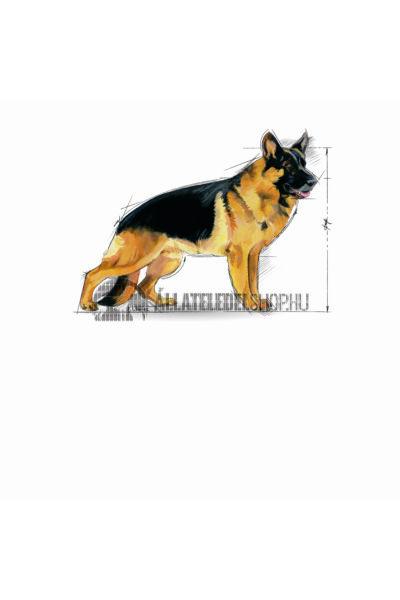 Royal Canin - Maxi Adult 5+ Mature kutyatáp 15kg