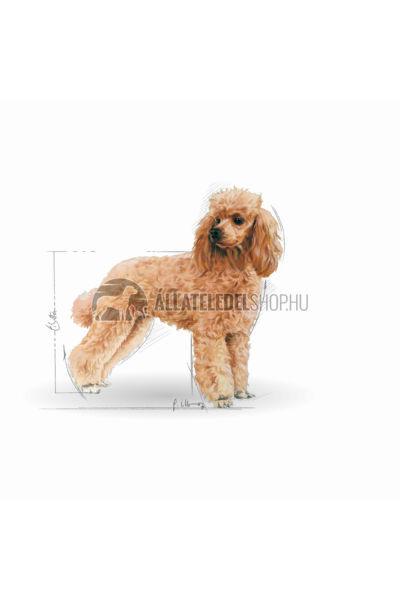 Royal Canin - Poodle Adult kutyatáp 0,5kg
