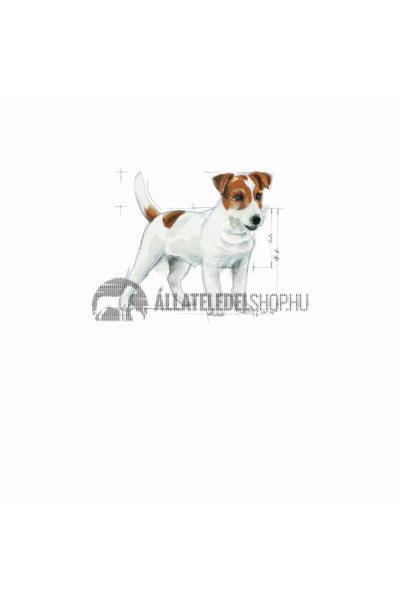 Royal Canin - Mini Adult kutyatáp 8kg