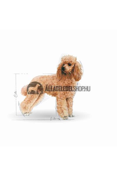 Royal Canin - Poodle Adult kutyatáp 7,5kg