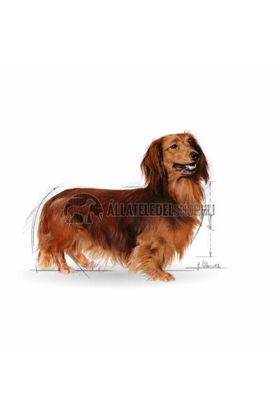 Royal Canin - Dachshund Adult kutyatáp 1,5kg