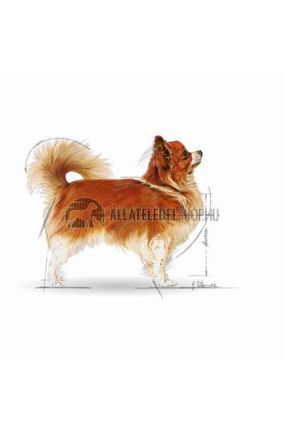 Royal Canin - Chihuahua Adult kutyatáp 0,5kg