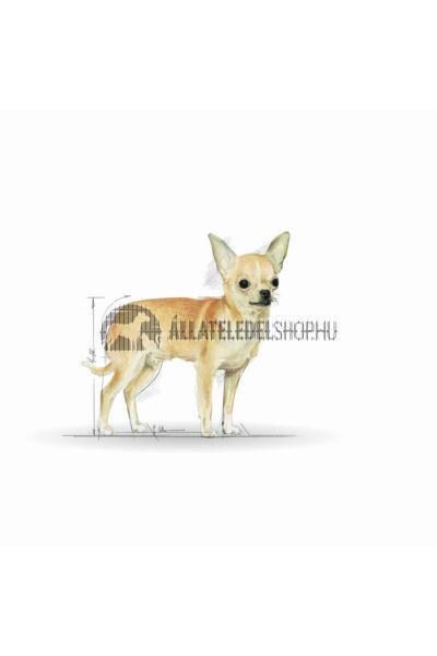 Royal Canin - Chihuahua Junior kutyatáp 0,5kg