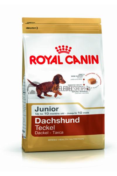 Royal Canin - Dachshund Junior kutyatáp 0,5kg