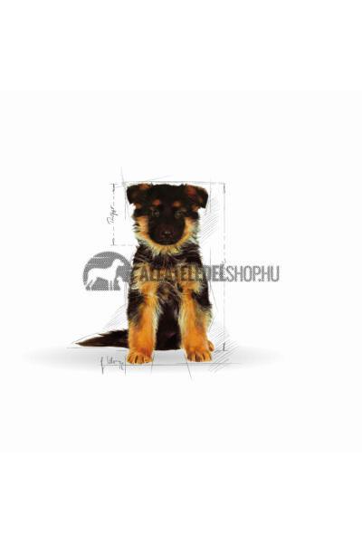 Royal Canin - German Shepherd Junior kutyatáp 12kg