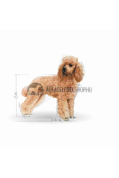 Royal Canin - Poodle Adult kutyatáp 1,5kg