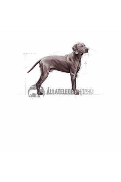 Royal Canin - Maxi Dermacomfort hypoallergén kutyatáp 3kg