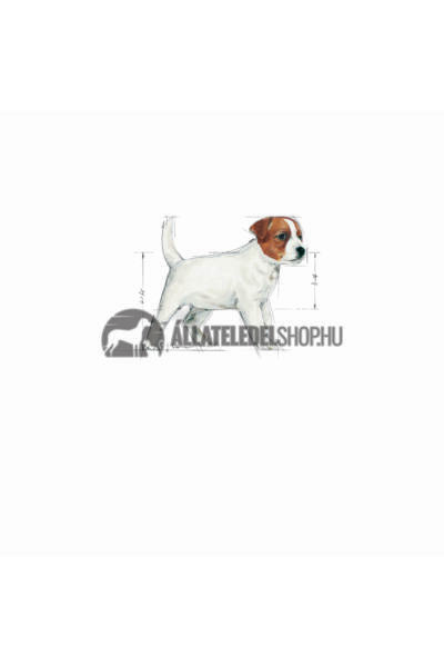 Royal Canin - Mini Junior kutyatáp 0,8kg