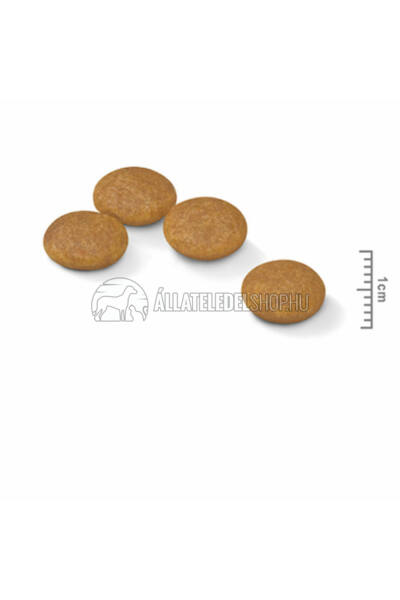 Royal Canin - Mini Dermacomfort hypoallergén kutyatáp 2kg