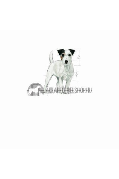 Royal Canin - Mini Ageing 12+ Mature kutyatáp 1,5kg