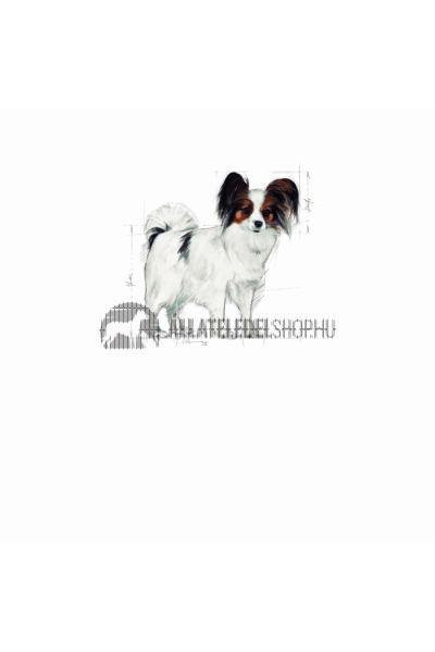 Royal Canin - X-Small Adult kutyatáp 3kg