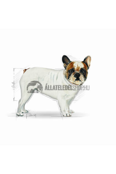 Royal Canin - French Bulldog Adult kutyatáp 3kg