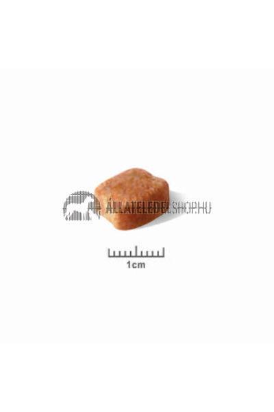 Royal Canin - Dachshund Adult kutyatáp 7,5kg