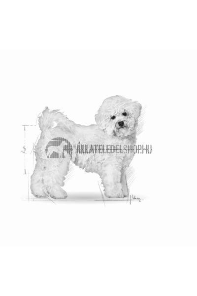 Royal Canin - Bichon Frise Adult kutyatáp 1,5kg