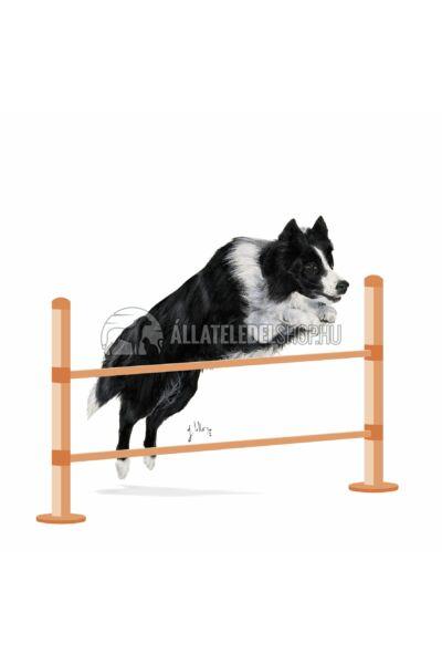 Royal Canin - Sporting Life Range Agility 4100. Large kutyatáp 3kg