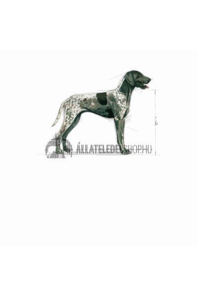 Royal Canin - Maxi Digestive Care kutyatáp 4kg