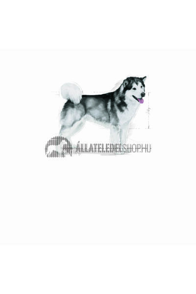 Royal Canin - Maxi Joint Care kutyatáp 3kg