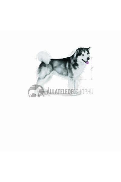 Royal Canin - Maxi Joint Care kutyatáp 12kg