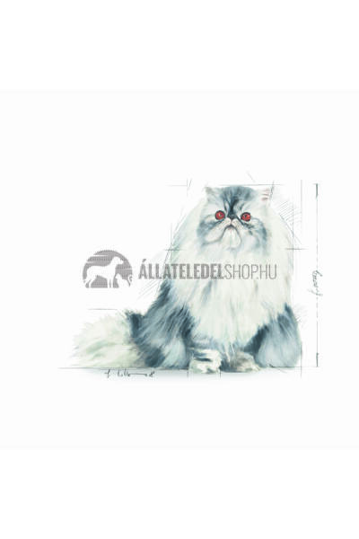 Royal Canin - Cat Persian Adult macskatáp 10kg