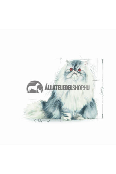 Royal Canin - Cat Persian Adult macskatáp 4kg