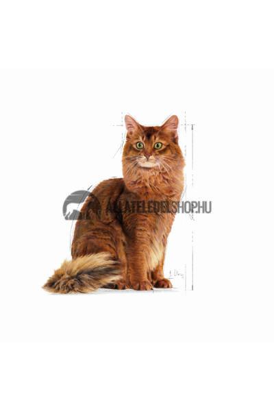 Royal Canin - Cat Light Weight Care macskatáp 10kg