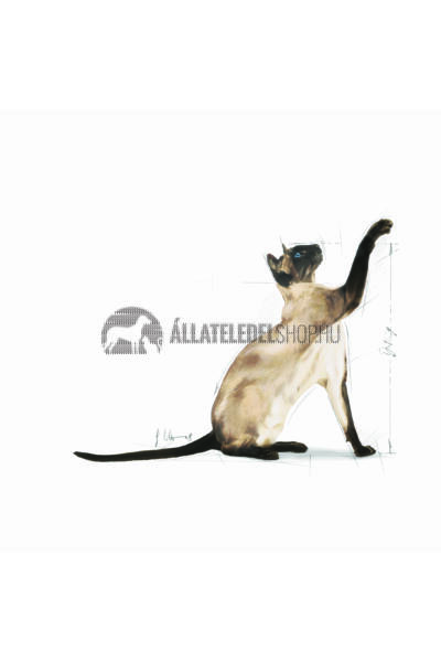 Royal Canin - Cat Siamese Adult macskatáp 400g