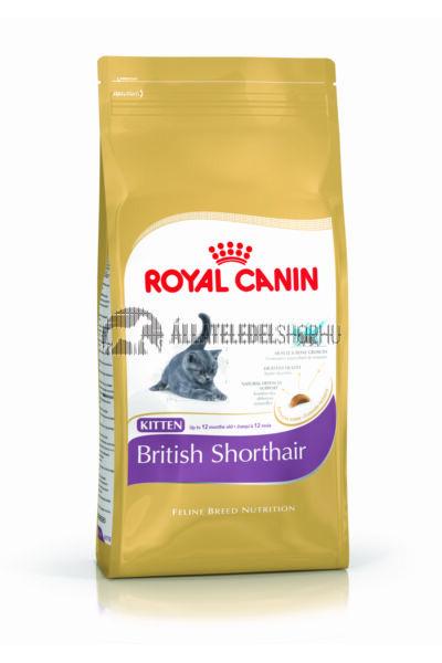Royal Canin - Cat British Shorthair Kitten macskatáp 10kg