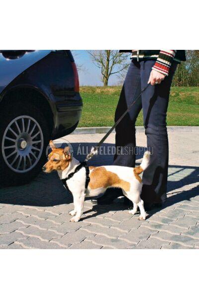 """Trixie - Biztonsági öv """"T"""" csatlakozású rövid póráz autóba 45-70cm / 25mm"""