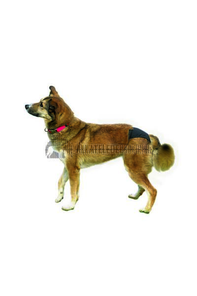 Trixie kutyaruha - Protective Tüzelőbugyi L Fekete 50–59cm