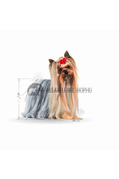 Royal Canin - Yorkshire Terrier Adult kutyatáp